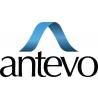 Antevo logo