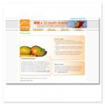Mango Finance