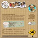 Pup Cups – frozen desserts for your best friend