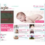 Agile Cover