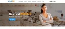 Small Biz Affordable website design