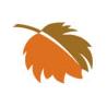 Autumnfire Internet Solutions Inc. logo