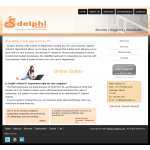 Delphi Systems Inc.