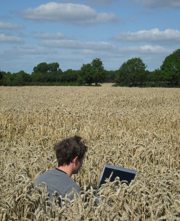 I do prefer the open-plan offices. Sadly, the corn is now all gone so I have to bring a packed lunch.