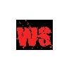 Web Solutions logo