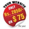 WebDesignerPune.com logo