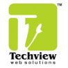 Techview Web Solutions logo