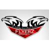 FlyerZ Technology Inc., logo