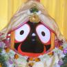 Jagannath Biz logo