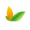 CreativeLeaves logo