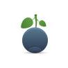 Blue Berry Designs logo