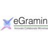 eGramin Infotech Pvt, Ltd. logo
