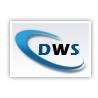 Dream Web Solution logo