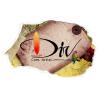 divcomartist logo
