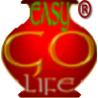 easygolife web solution logo