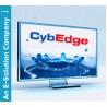 CybEdge logo
