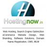 hostingnow.in logo