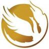 phoenix binary system logo