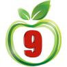 9 Apple Web logo