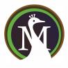 Moreweb Solutions logo