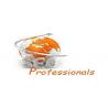 SEO Professionals