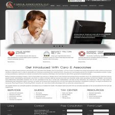 Caroandassociates SEO Services