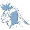 Apache Solutions Ltd logo
