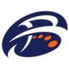 Bluefusion logo