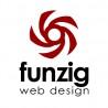 Funzig Web Design logo
