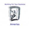 Ameriss (Web Design) Limited logo