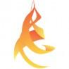 Netflare logo