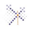 The Web Design Company logo
