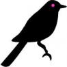 Blackbird Graphic Design logo