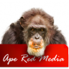 Ape Red Media - Hampshire logo