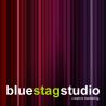blue stag studio logo