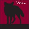 Foxxweb Design logo
