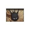 Kings of Web, Kingsofweb.com logo