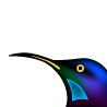 Riflebird Limited logo
