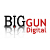 Big Gun Digital Ltd logo