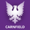 Carnfield Web Design Ltd logo