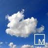 MyDigitalMedia logo