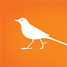 Chittak Web Development logo