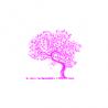 Stable Web Design logo