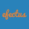 Efectus Consulting Ltd. logo