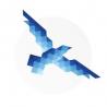 Fly Full Circle logo