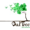 OwlTree Web Solutions logo