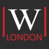 WebVIzion UK logo
