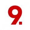 Pixel 9 Design logo