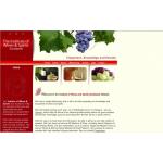 Institute of Wines and Spirits Scotland (IWSS)