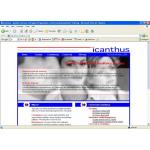 Icanthus Ltd.